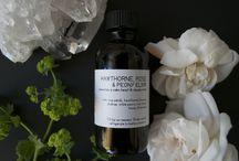 APOTHECARY // / plant medicine // spirit medicine.
