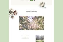 Whimsical websites
