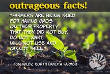 Outrageous facts! / There are some things in this world that still surprise us.  From farming practices, to hidden ingredients, or even blatant disregard for general health and wellness.  These outrageous facts may shock you too.