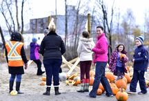 2015 Chuck a Pumpkin Fundraiser / Squash Cystic Fibrosis with Orchards Fresh Food Market
