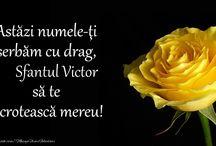 Felicitari de Sfantul Victor / Aici gasiti felicitari de sfantul Victor, felicitari pentru cei care poarte numele Sfantului Victor, felicitari pentru Victor si Victoria. Sfantul Victor este sarbatorit pe 11 noiembrie