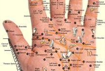 1 mani= corpo