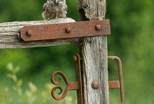 Animal Kingdom || Fly away ||