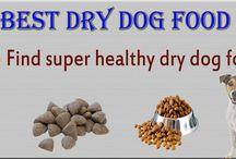 Healthy Dog foods / Find Best dog foods - Find super healthy dry dog food, it provides best information about dry dog food and very healthy dog food.