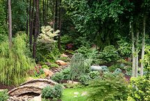 Shaded spaces