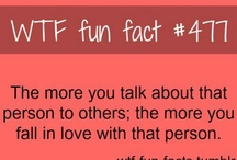wtf facts