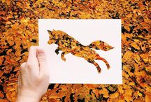 Silhouettes (paper cuts and nature) / by Jane LaFazio