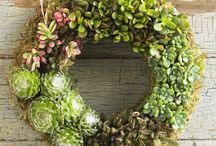 Garden / by Arleen Jackson