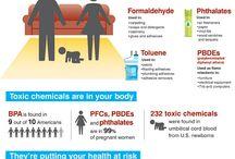 toxicology - BPA, Plastics, Pthalates