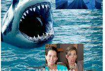 Shark Tank / Our swim with the sharks 4/10/14 Season 5 ABC