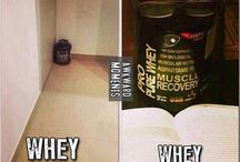 bodybuilding humour