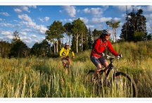 Mountain Biking DV Style / by Deer Valley Resort