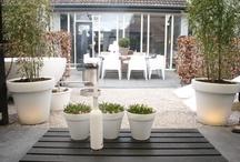 Witte plantenpotten buiten