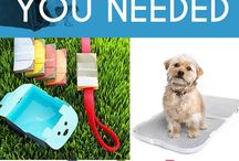 Great Products for Dogs