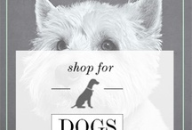 Pet Lifestyle & Accessories / Some of the doggy places we like to shop!