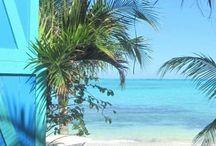 plage           pláž