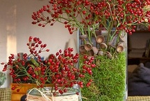 Holiday Ideas for Home / by Lisa Nassar