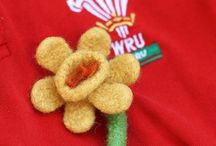 Welsh Rugby - C'MON WALES! Cymru am byth! / Let win the 6 Nations again 2014