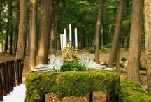 Table settings / Setting a table