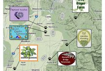 Best of Canby / Best places to visit, eat and enjoy in and nearby our little garden town of Canby.