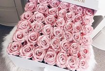 »PINK«