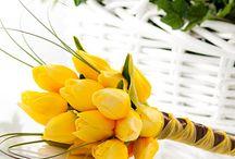 flowers :) / by Courtney Rosalez
