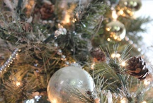 Christmas :) / by Tara Antuono