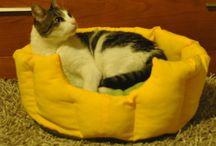 Camas e Acessórios para Pets