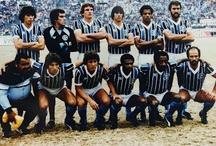 Grêmio / The football team that I love.