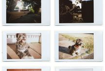 Polaroid and Photography