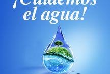 Ecologia Agua