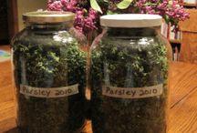 Growing & Cultivating / Growing, Drying & Cultivating Flowers, Plants, Herbs & Vegetables