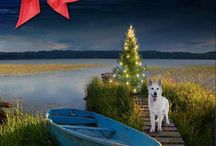 Christmas in Dogtown, by Suzanne Johnson / A standalone paranormal novelette with a touch of romance.