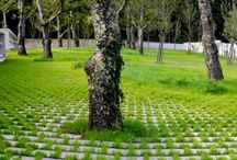 cintoríny