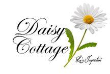Ann's white Daisy cottage