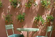 Garden Design&Decor