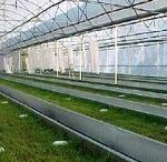 Snail Farming Resources