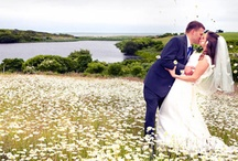 wedding pictures / by Tabitha Mort