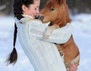 People and Horses in Love / Horses and people close and huggng