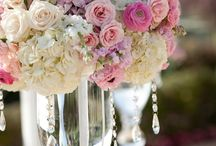 Bodas // Weddings