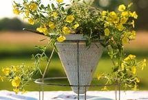 Outdoor Spaces and Ideas