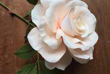 Priya....Crepe paper flowers