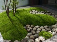 Asiatiska trädgårdar