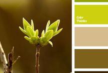 Color palettes..