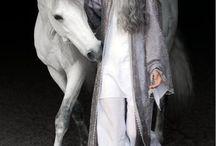 cavallo unico