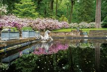 Traditional Gardens / Gardens and landscapes for traditional buildings.