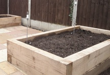 Raised Beds & Containers / raised beds, pots, troughs and containers large and small and plants to grow in them