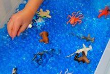 Červen / Voda - pokusy, cyklus vody Život v rybníce (vývoj žáby) Záhadný podmořský svět