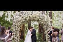 wedding / by Angela Stearns-Smith