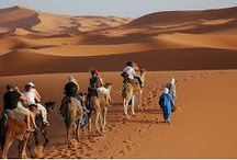 Morocco Camel Trekking and Excursion. /  Morocco has been one of the most stunning destinations in the World.